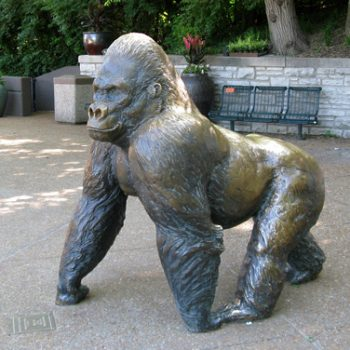 Public Art Sculpture in Zoos - Phil the Gorilla bronze